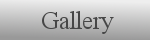virual gallery, virtual galleries, gallery, gallerie, Dance, Sapere Aude, Marble sculptures, Granito Sculptures, Initials, Atalanta fugiens, Desire in Language, Mantellelmo, Volente, sculptor, stonecarver, philosopher, Exhibitions in TheNetherlands, New York, Rijswijk, Leidschendam, Rijswijk, Leiden, Schoonhoven, Leiden, The Haque, Rotterdam, Zwolle, Veenendaal, Schoten, Belgie, Voorburg, Bergschenhoek, New York, Lisserbroek, Summer exhibition Pulchri Studio, 2005 Cadillac Europe, Mark Rietmeijer
